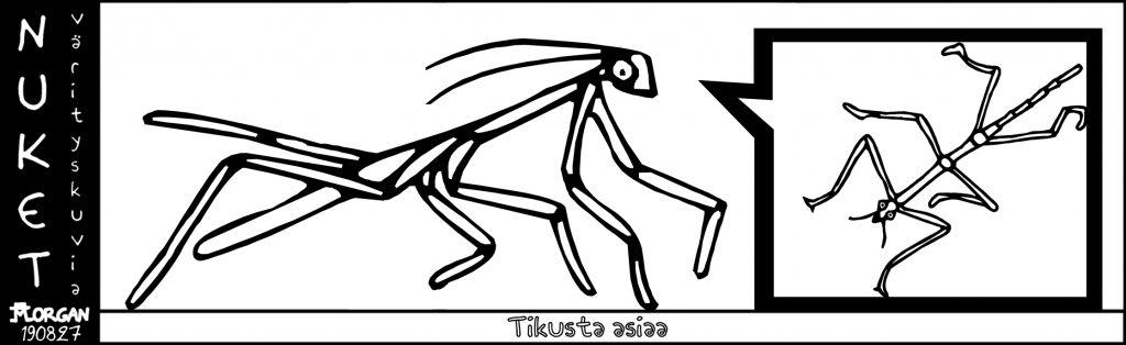 Nuket20190827
